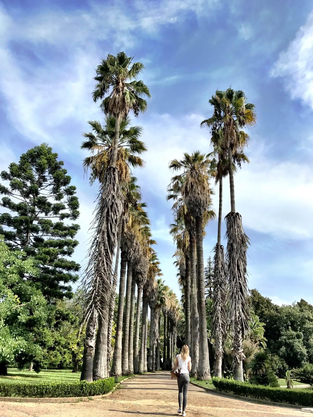 Travel Lisbon Portugal House-of-Huber Botanic-Garden
